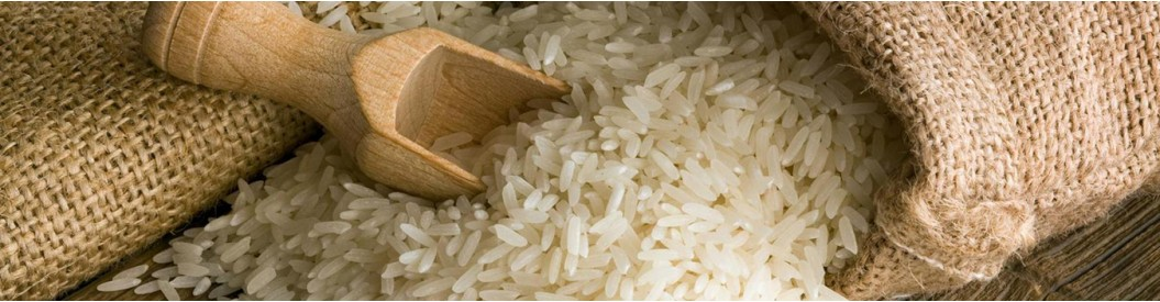 Rice & Rice Product